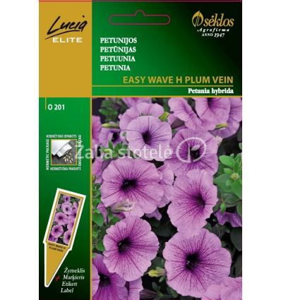 PETUNIJОS-SURFINIJОS EASY WAVE H PLUM VEIN