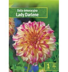 JURGINAI LADY DARLENE