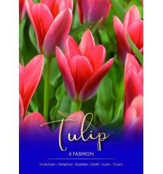 TULPĖS FASHION 73329