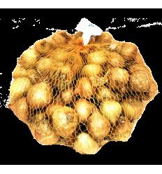 STURON SVOGŪNŲ SODINUKAI 25/30 1KG