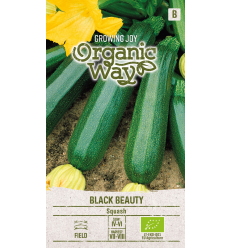 CUKINIJOS ORGANIC WAY BLACK BEAUTY