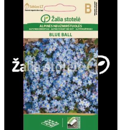 ALPINĖS NEUŽMIRŠTUOLĖS BLUE BALL