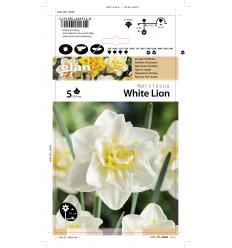 NARCIZAI WHITE LION
