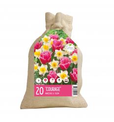 KOLEKCIJA COURAGE 12 x Tulipa Izumi 8 x Narcissus Ice Follies