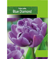 TULPĖS BLUE DIAMOND MELYNOS