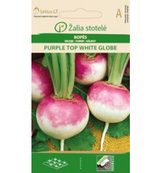 ROPĖS PURPLE TOP WHITE GLOBE
